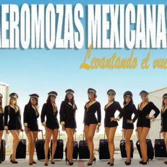 pack fotos +50 aeromozas mexicana calendario 2011