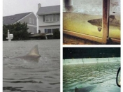 Fotos del desastre de Sandy en USA