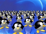 Wallpapers HD - Linux