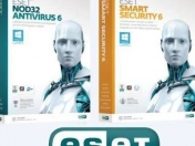 Licencias Eset Smart Security 6 y nod32