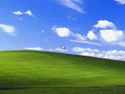Windows XP dice adiós.