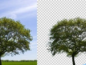 17 Tutoriales de Photoshop