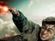 harry potter contra sparrowhawk